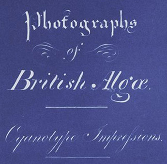 Anna Atkins - Photographs of British Algae Cyanotype_Impressions