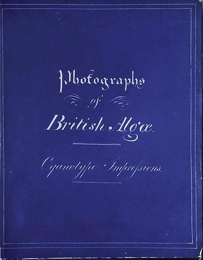 Anna Atkins - Photographs of British Algae Cyanotype_Impressions
